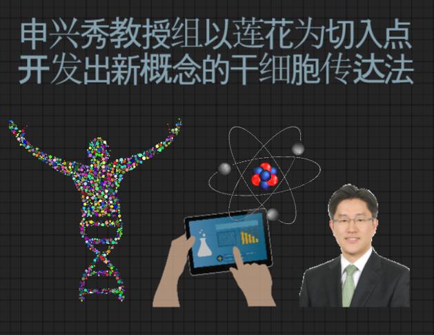 申兴秀教授组以莲花为切入点开发出新概念的干细胞传达法