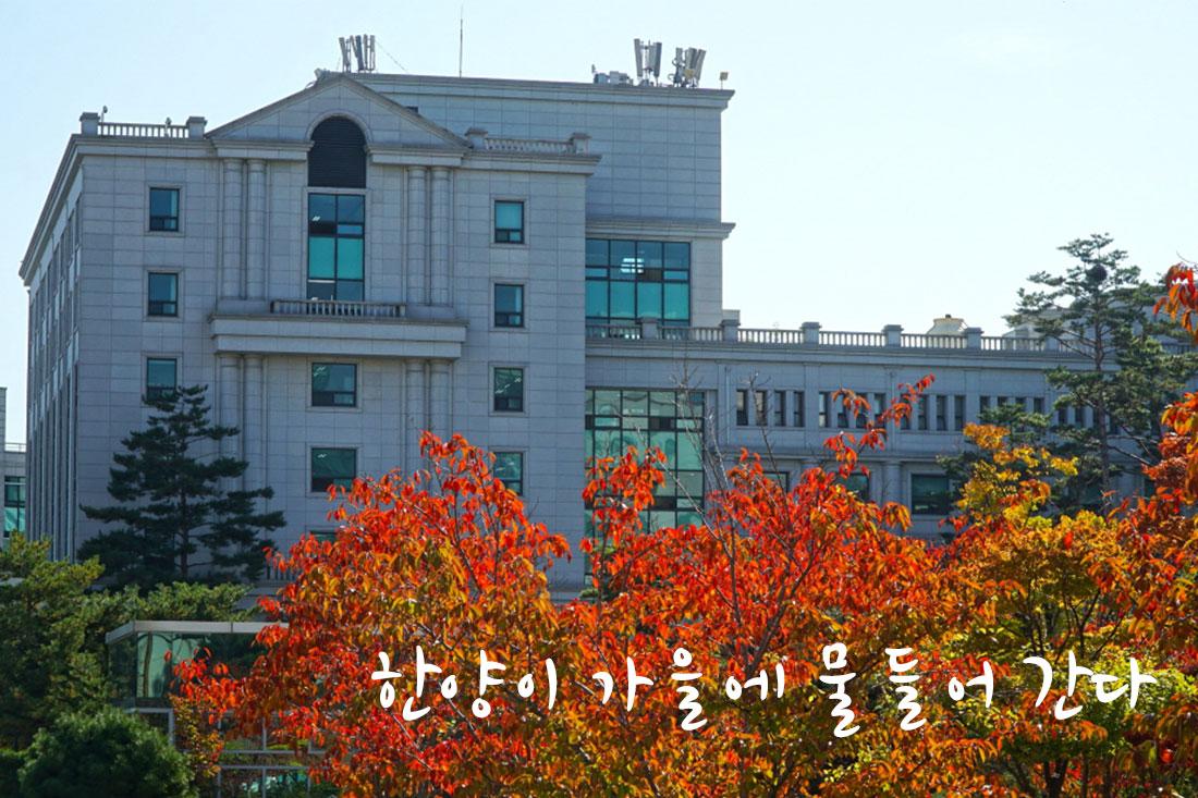 어느새 가을 속으로 (17장)
