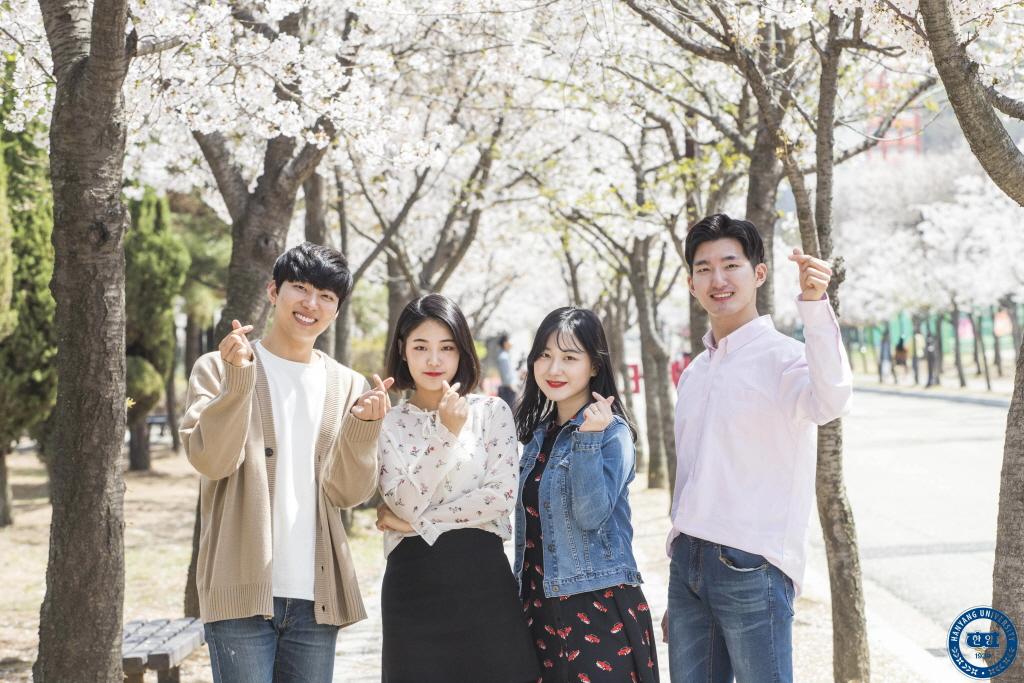 2018 ERICA 벚꽃주간, 눈부신 ERICA 꽃길 7일의 기록