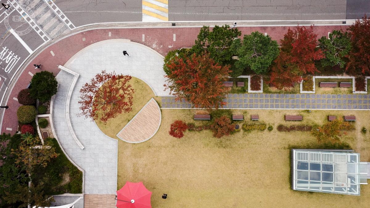 2019 드론으로 찍은 캠퍼스의 가을 사진