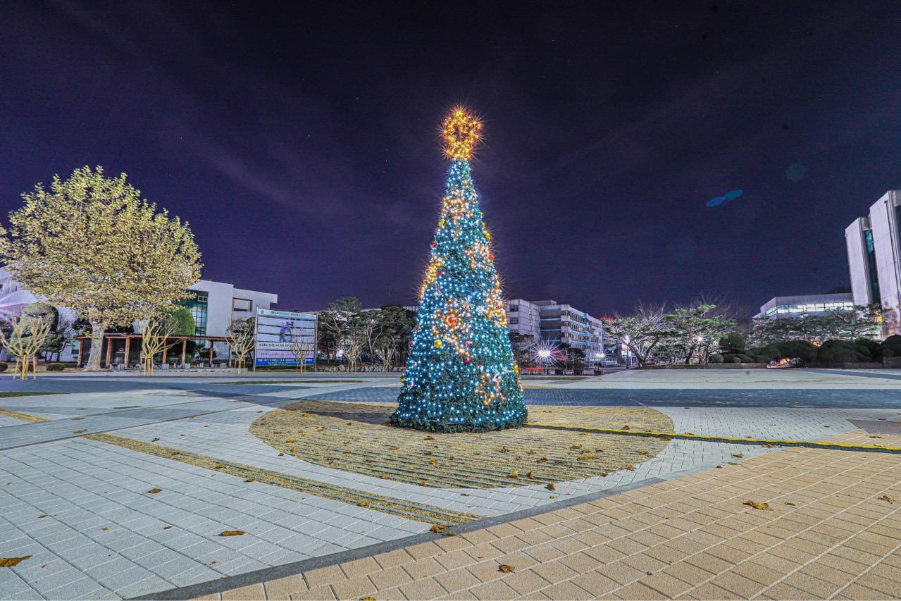 ERICA캠퍼스에서 멋진 크리스마스 트리가 설치되었습니다~ 반짝 반짝!