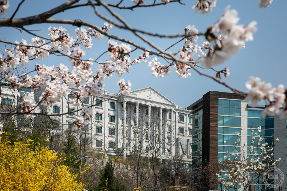 [포토] 봄이 오는 캠퍼스를 전해드립니다.