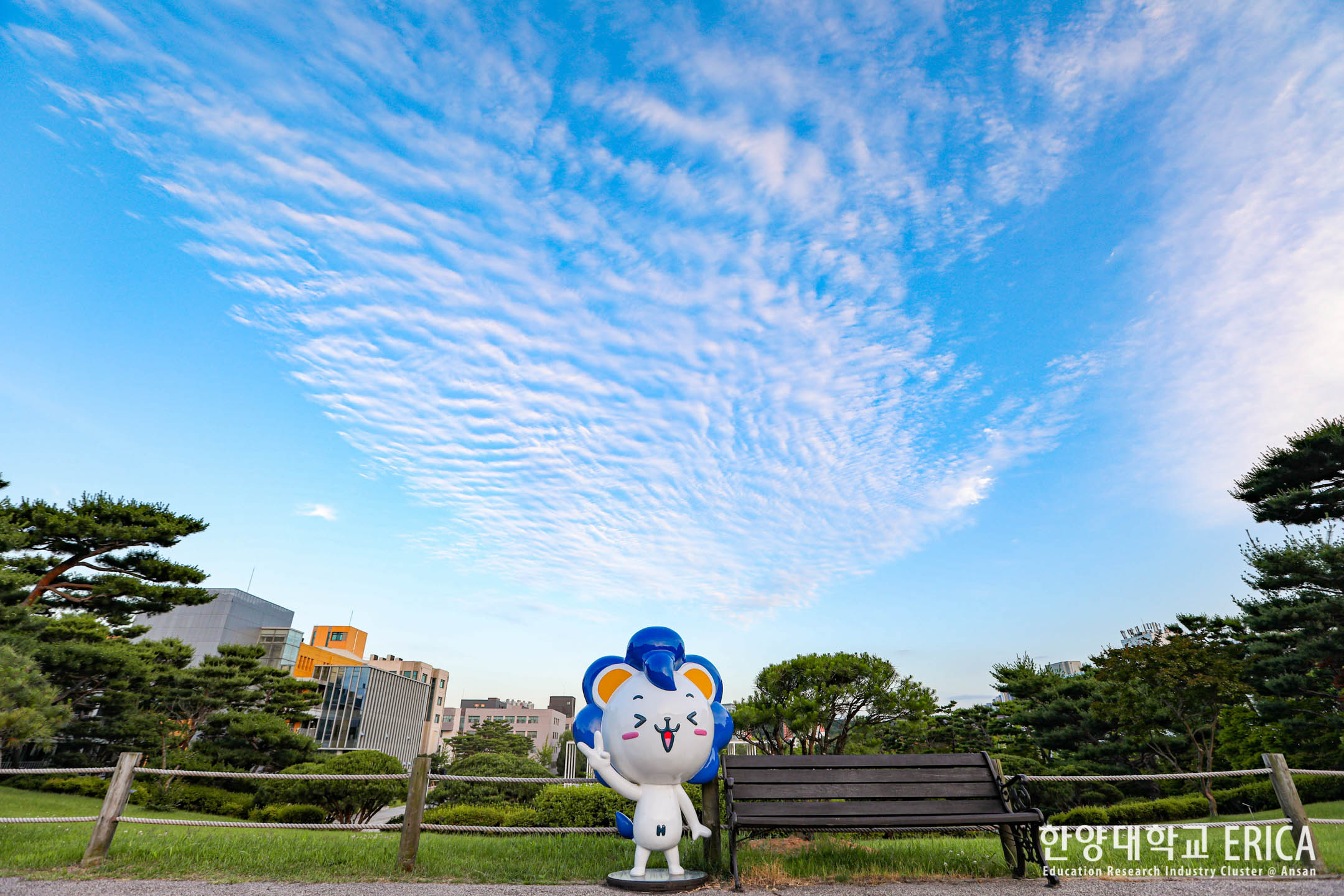 맑은 6월, 하늘 그리고 구름